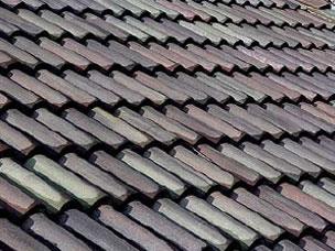 Concrete Tile Roof
